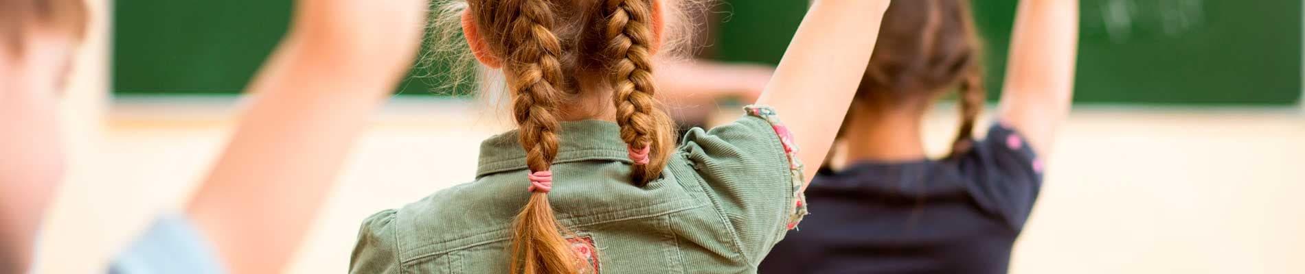 Educación preescolar, básica y media